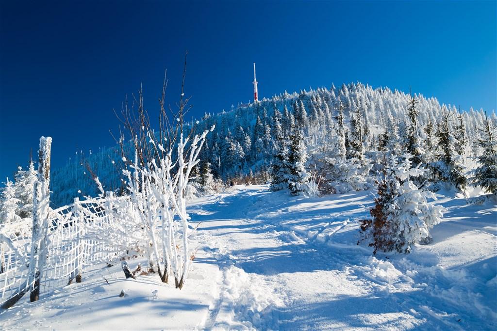 Česká republika Morava Beskydy - Zimní pohled na Lysou horu
