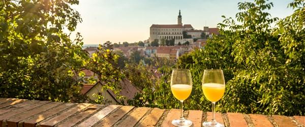 Česká republika Jižní Morava - Burčák