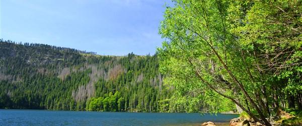 Česká republika Šumava - Černé jezero